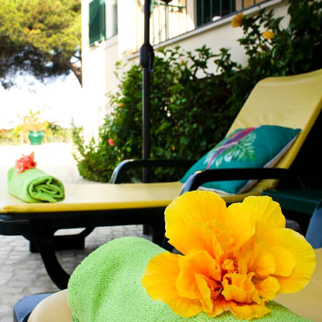 You can spend a quiet afternoon lying on our sun loungers