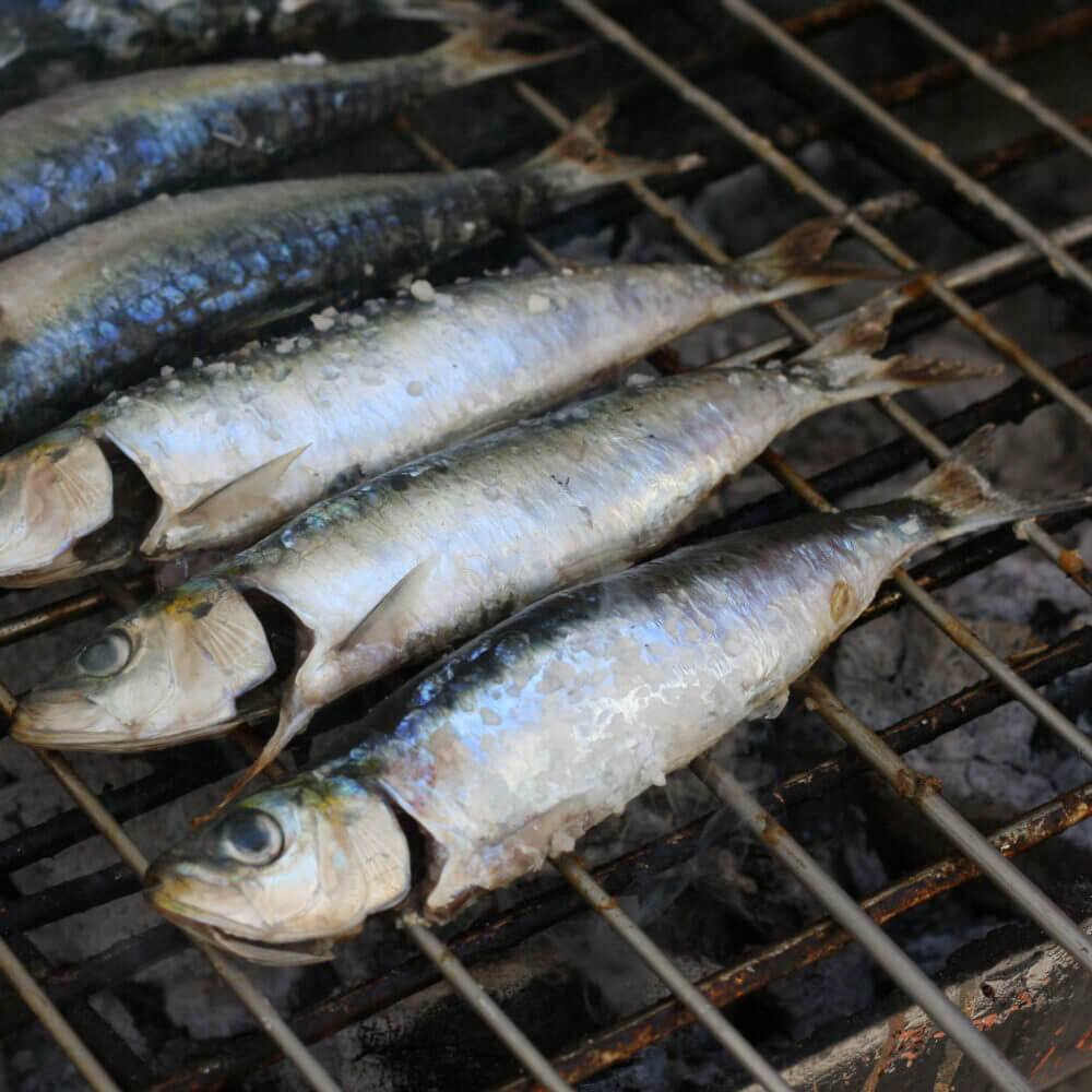 Delight yourself with the best fresh grilled fish of the region