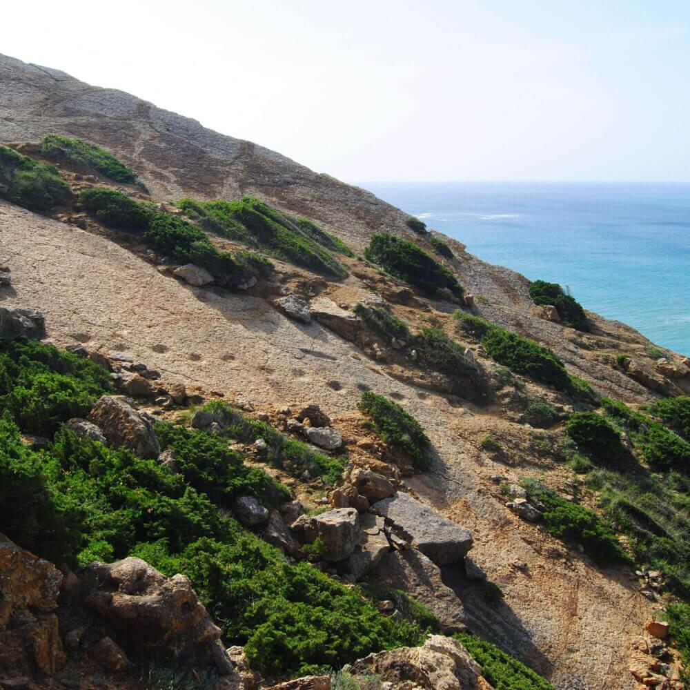 Dinosaur footprints on the limestone cliffs north of Cabo Espichel in Portugal